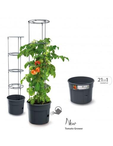 Doniczka do uprawy pomidorów Tomato...
